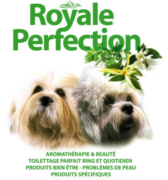 ROYALE PERFECTION